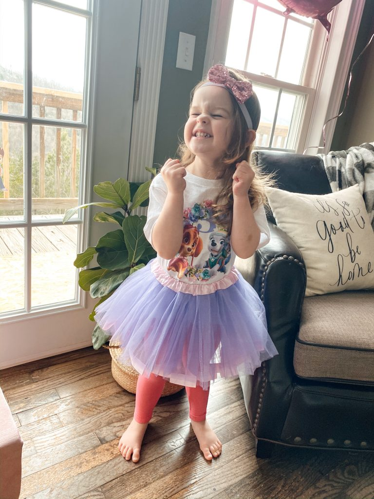 Paw Patrol 3rd Birthday outfit with Skye and Everest