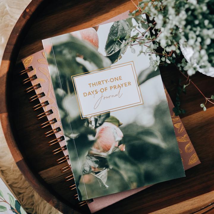 31 days of prayer journal