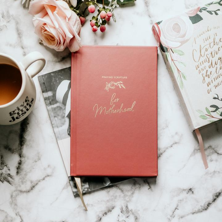 Praying Scripture for Motherhood journal